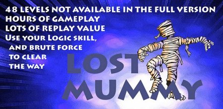 Lost  Mummy